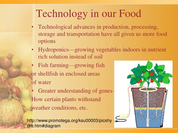 Technology in our Food