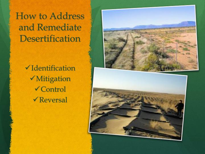 How to Address and Remediate Desertification
