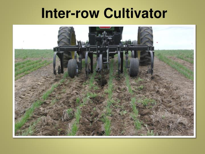 Inter-row Cultivator