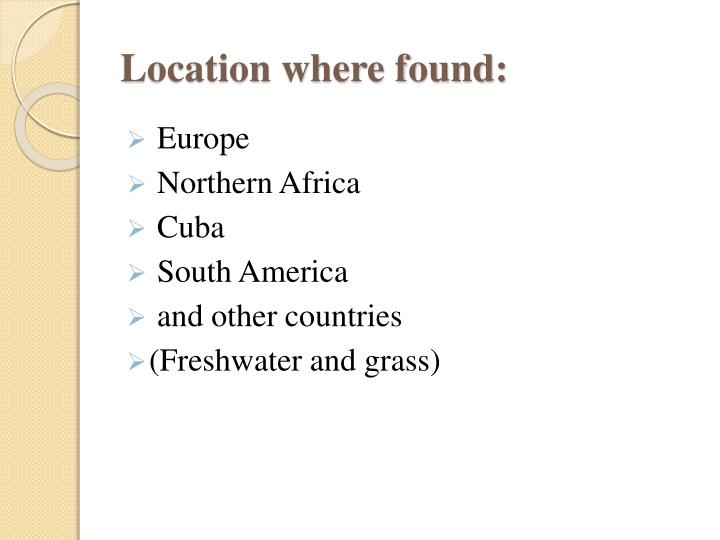 Location where found: