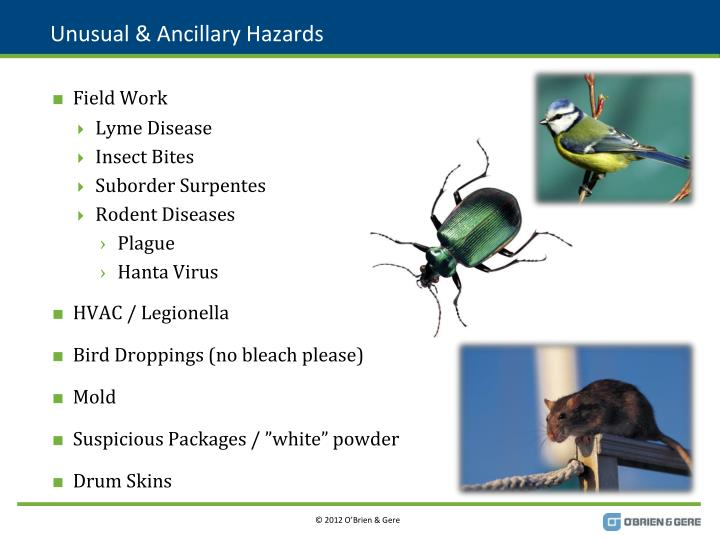 Unusual & Ancillary Hazards