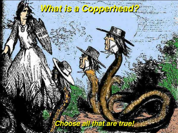 What is a Copperhead?