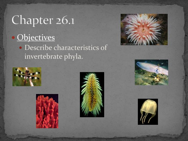 Chapter 26.1