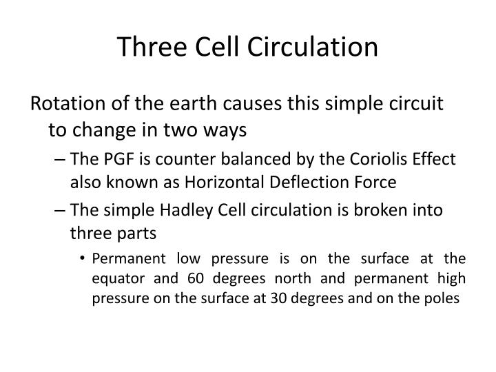 Three Cell Circulation
