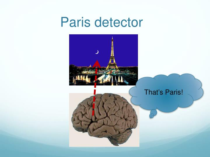 Paris detector
