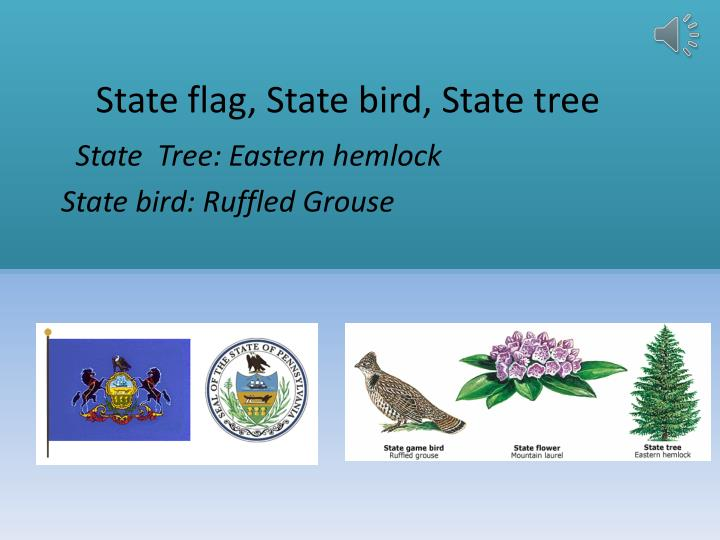 State flag, State bird, State tree