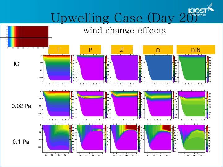 Upwelling Case (Day 20)