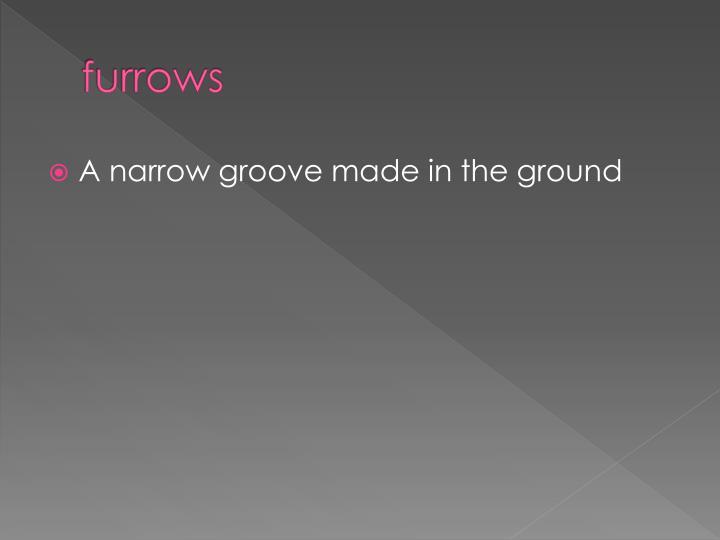 furrows
