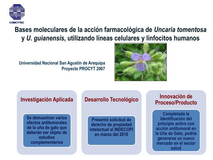Bases moleculares de la acción farmacológica de