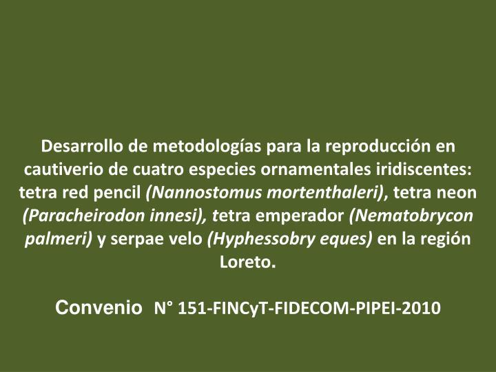 Desarrollo de metodologías para la reproducción en cautiverio de cuatro especies ornamentales iridiscentes: tetra red pencil