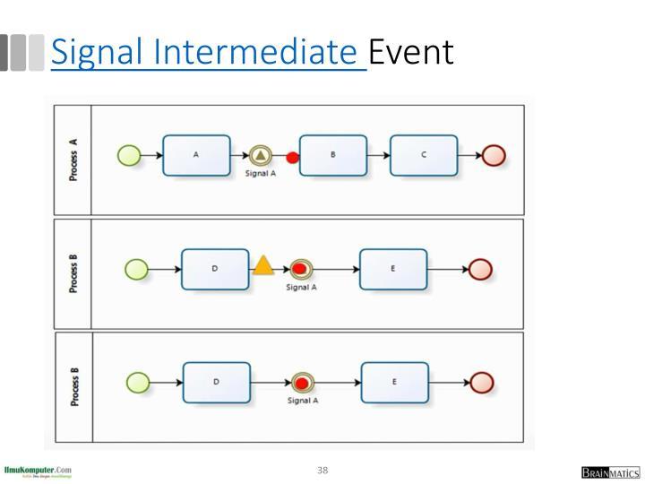 Signal Intermediate