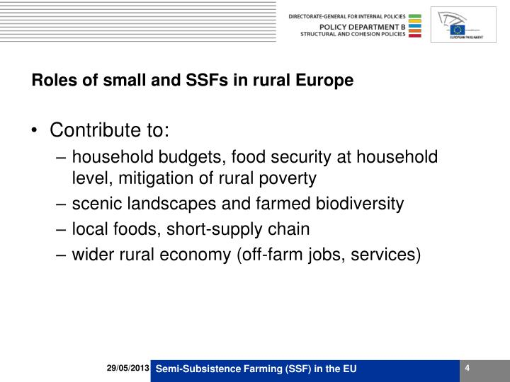 Roles of small and SSFs in rural Europe