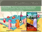 fluid mosaic model6