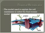 plasma membrane1