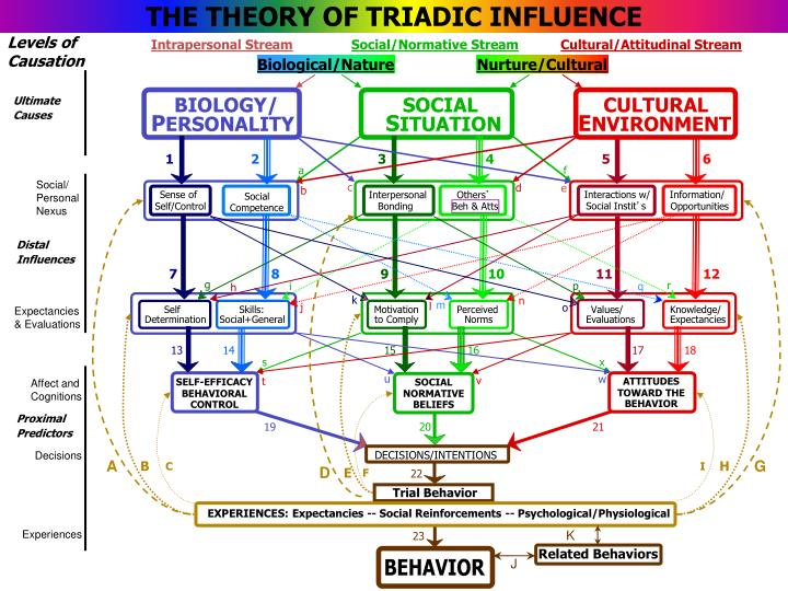 THE THEORY OF TRIADIC INFLUENCE