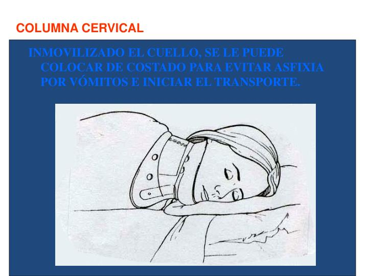 La crisis rompedora del departamento de pecho de la columna vertebral