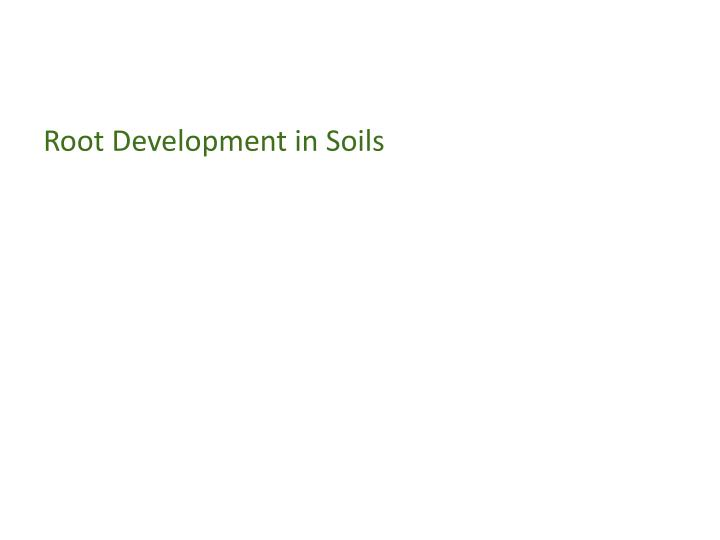 Root development in soils