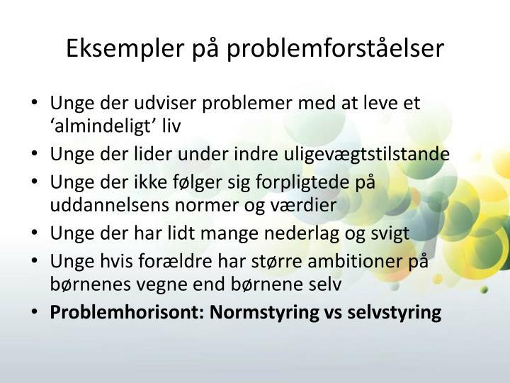 Eksempler på problemforståelser