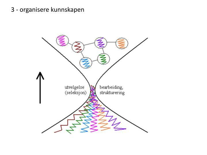 3 - organisere kunnskapen