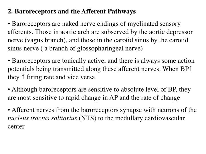 2. Baroreceptors and the Afferent Pathways