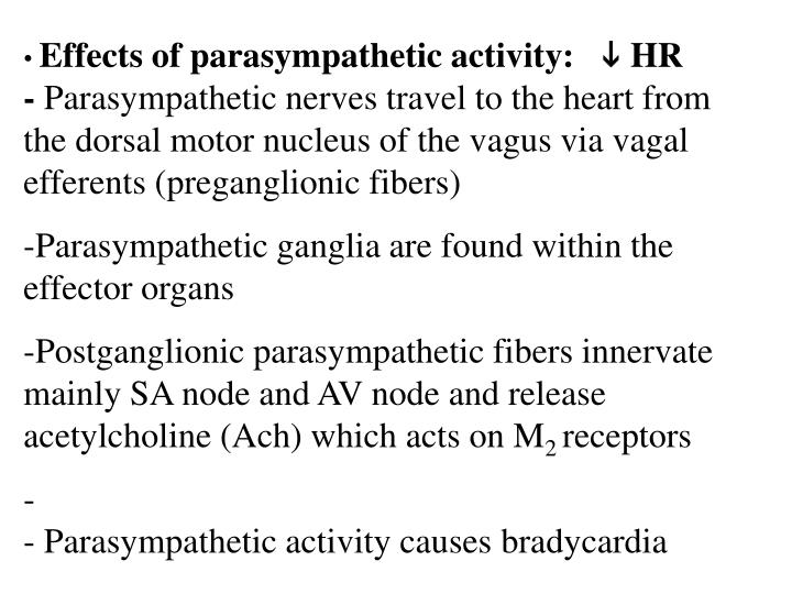 Effects of parasympathetic activity: