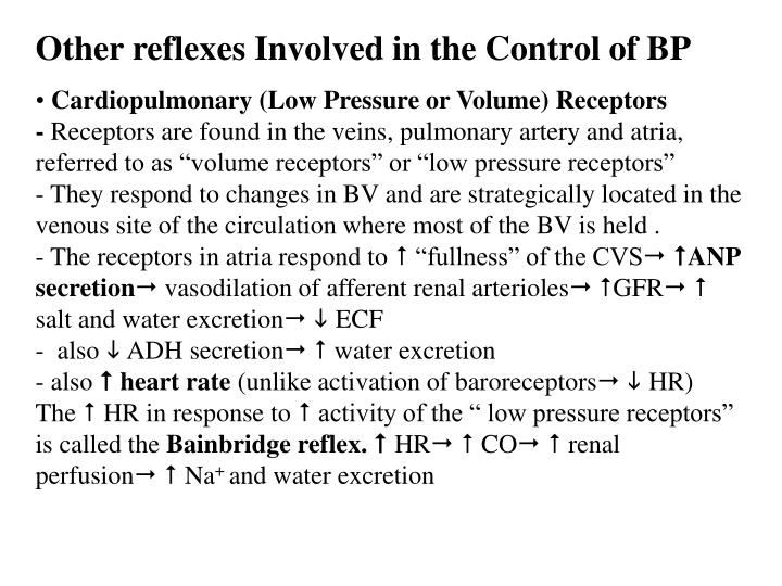 Other reflexes Involved in the Control of BP