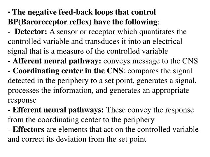 The negative feed-back loops that control BP(