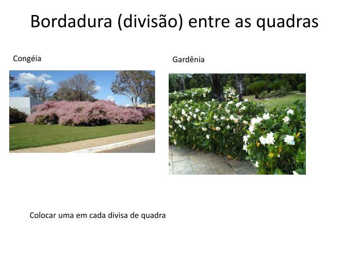 Bordadura (divisão) entre as quadras