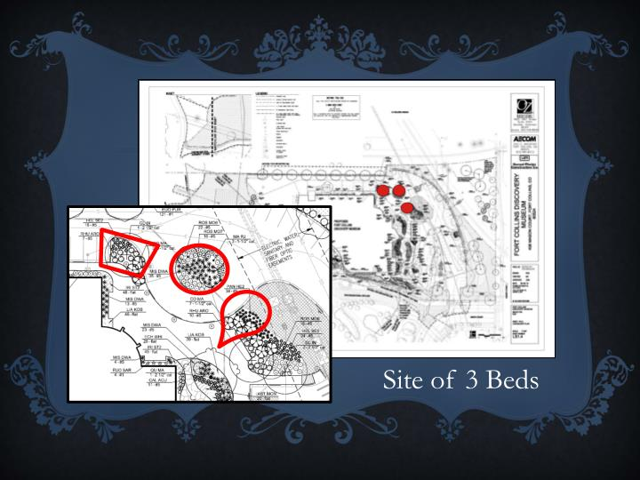 Site of 3 Beds