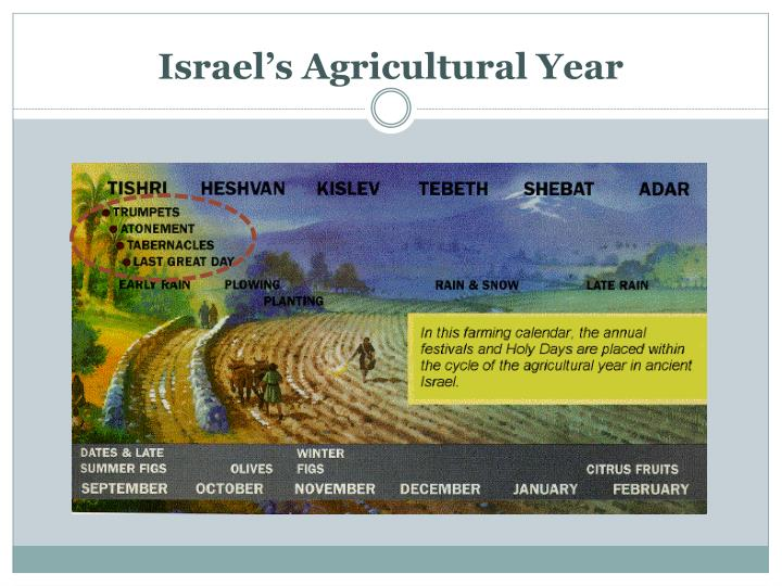 Israel's Agricultural Year