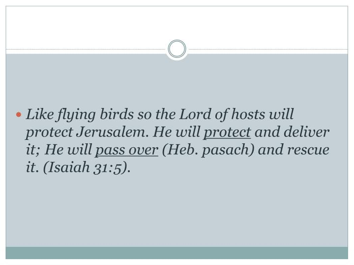 Like flying birds so the Lord of hosts will protect Jerusalem. He will