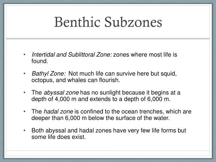 Benthic Subzones