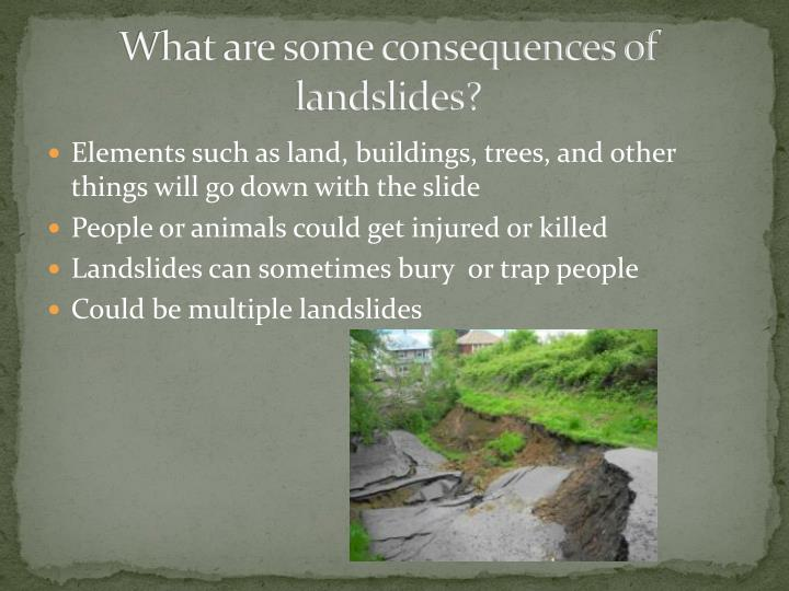 What are some consequences of landslides?