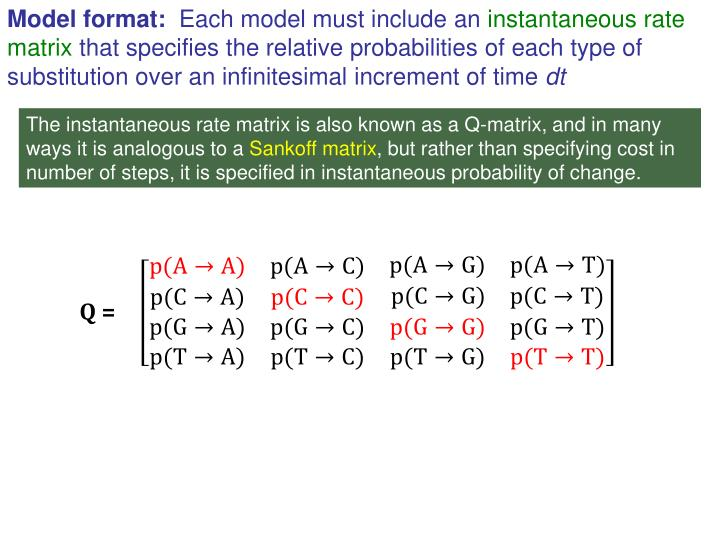 Model format:
