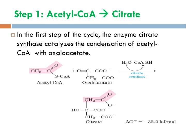 Step 1: Acetyl-