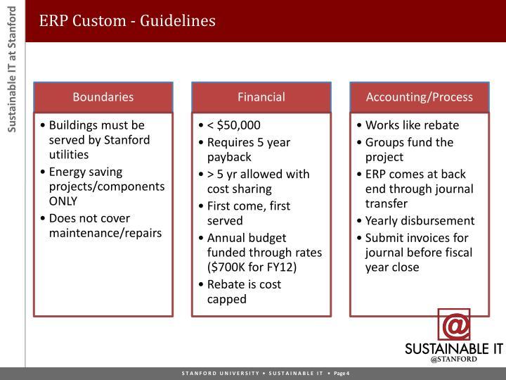 ERP Custom - Guidelines