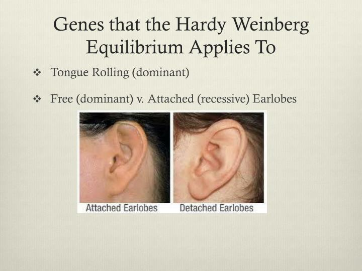 Genes that the Hardy Weinberg Equilibrium Applies To