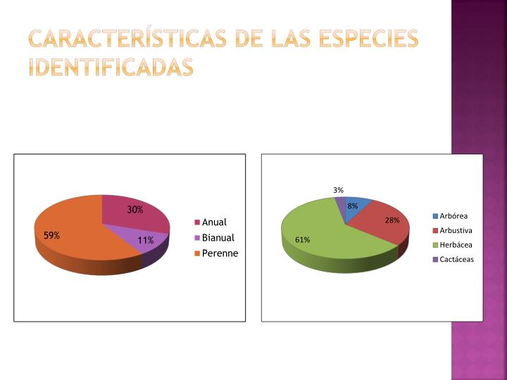 Características de las especies identificadas