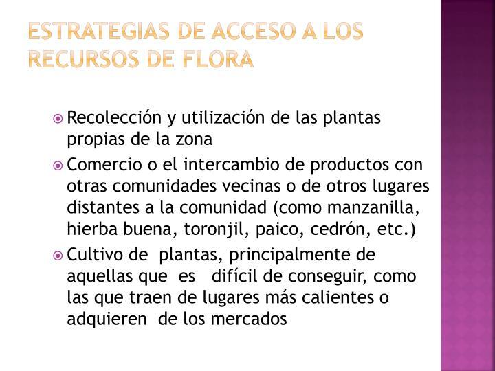 Estrategias de acceso a los recursos de flora