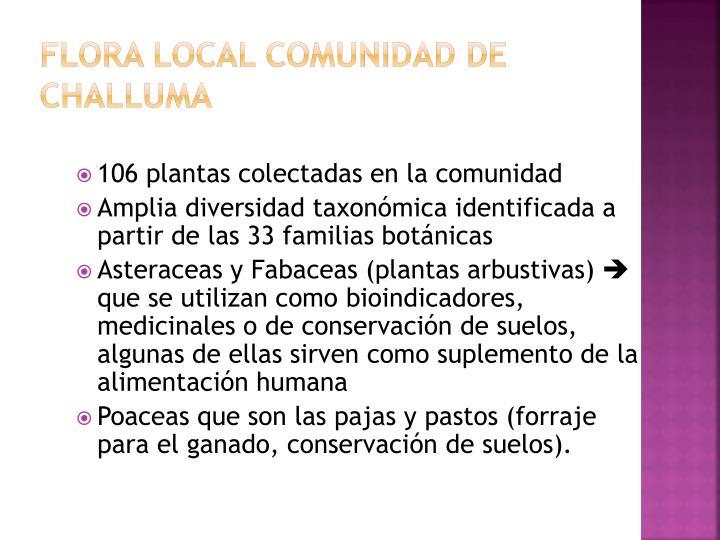 Flora local Comunidad de
