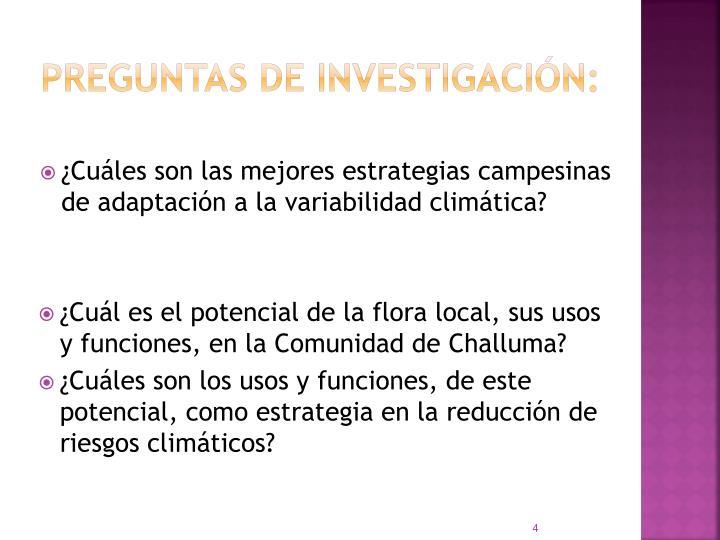 PREGUNTAS DE INVESTIGACIN: