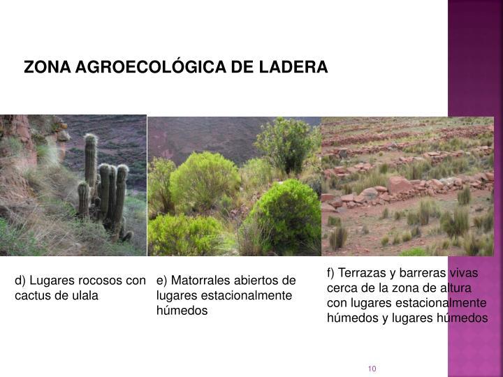 ZONA AGROECOLÓGICA DE