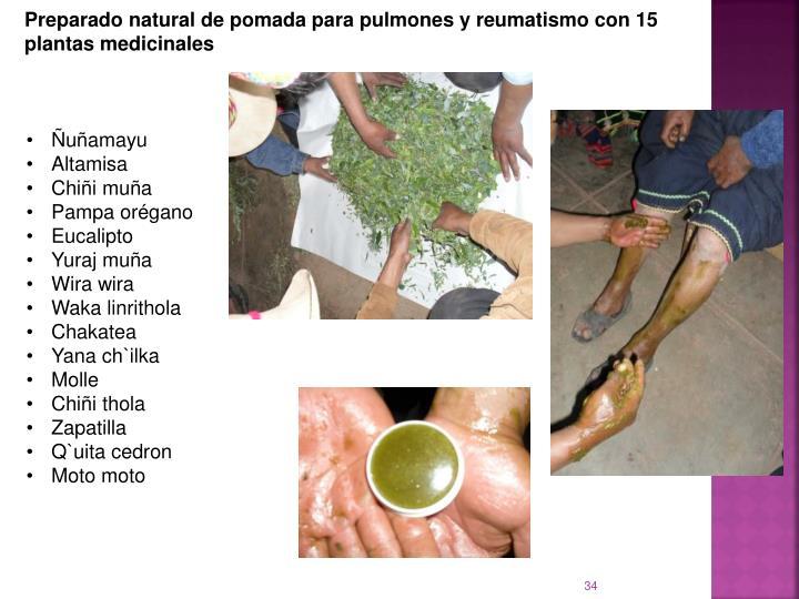 Preparado natural de pomada para pulmones y reumatismo con 15 plantas medicinales