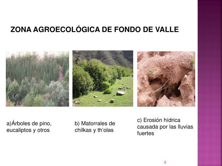 ZONA AGROECOLGICA DE FONDO DE VALLE