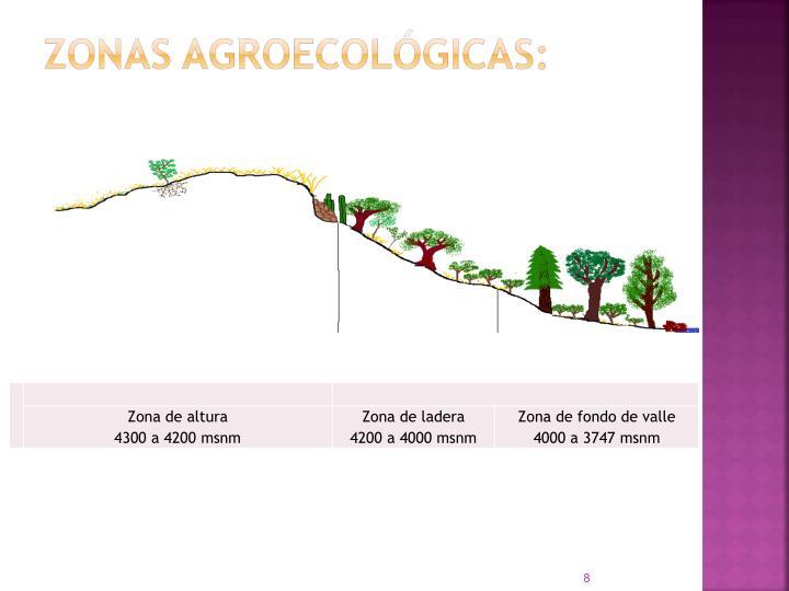 Zonas agroecológicas: