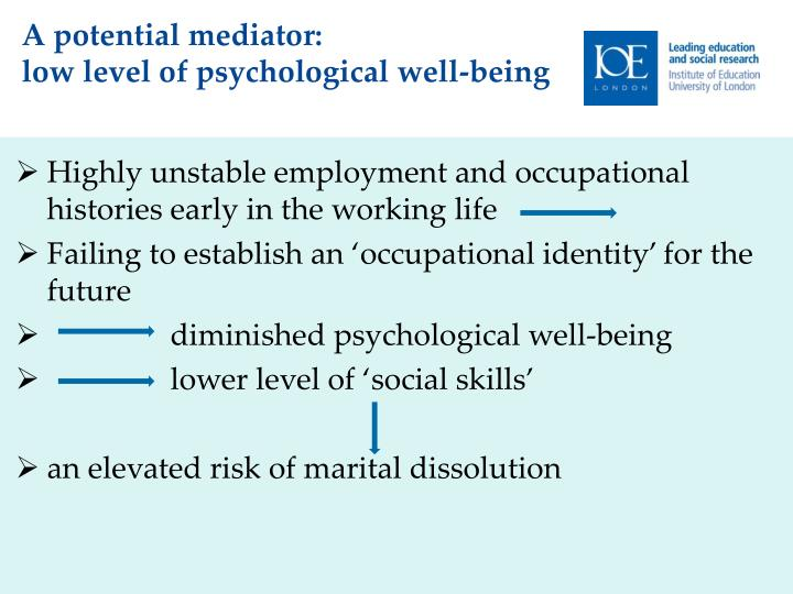 Highly unstable employment and occupational histories early in the working life