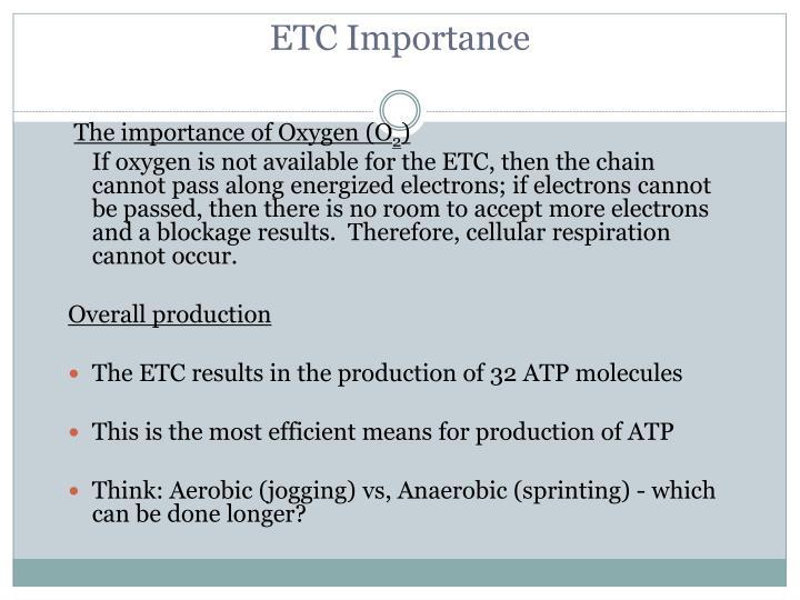 ETC Importance