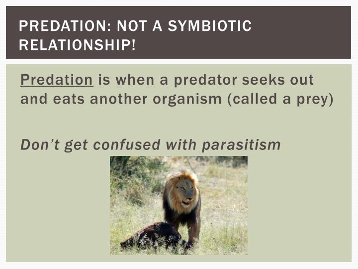 Predation: NOT a symbiotic relationship!