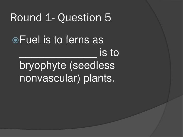 Round 1- Question