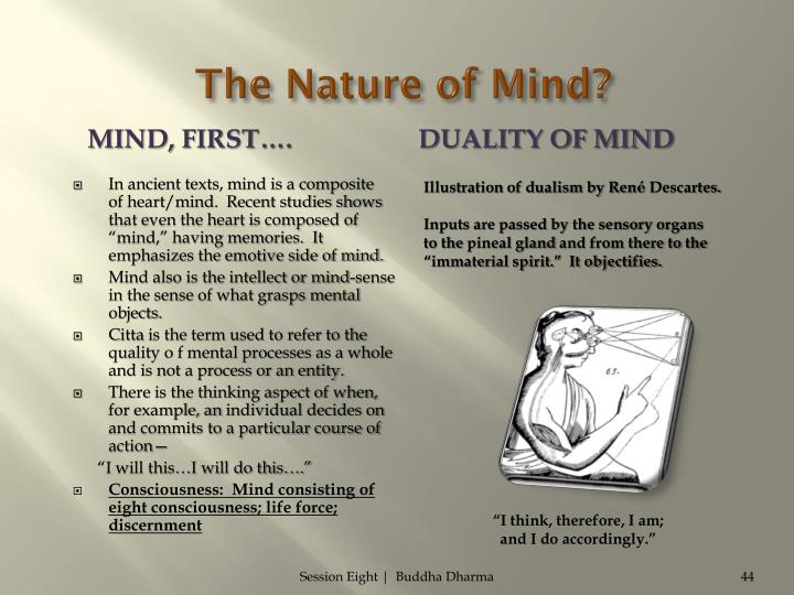 The Nature of Mind?